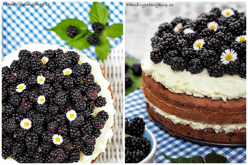 cuketový dort s ostružinama (výběr)