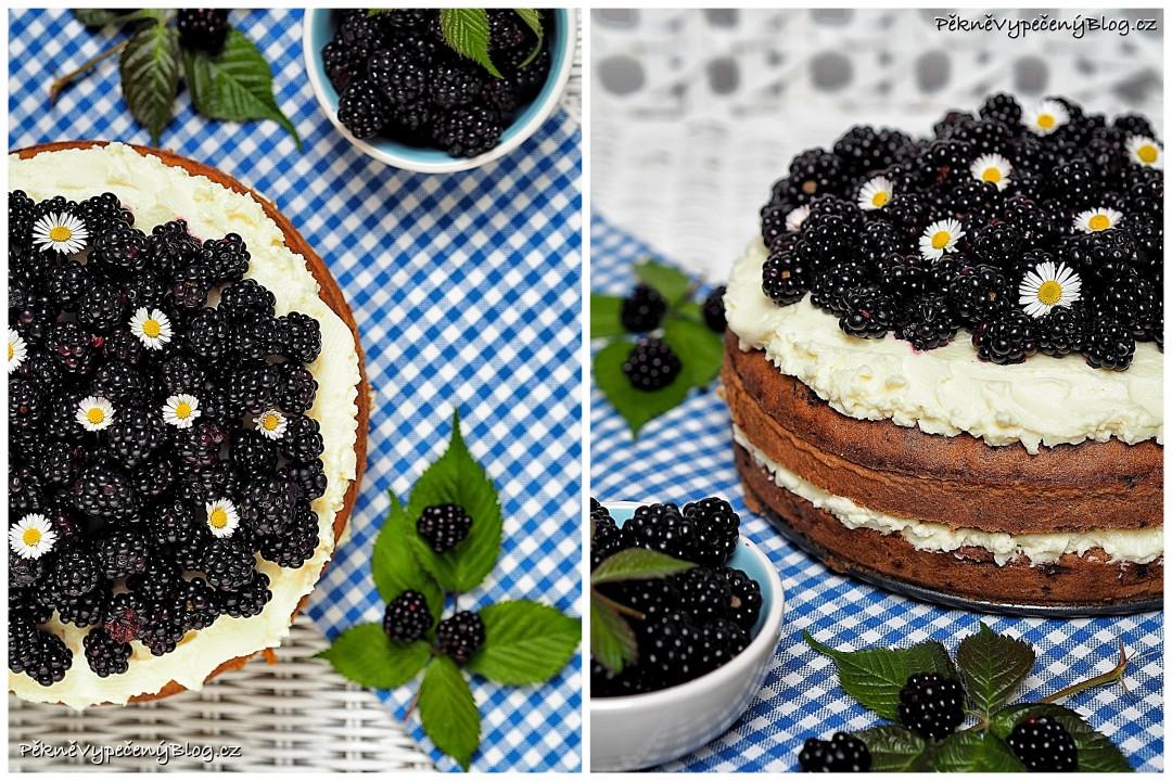 cuketový dort s ostružinama (výběr)1